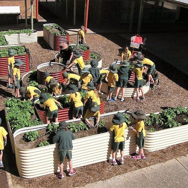 raised garden bed sydney